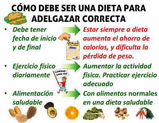 Que comer para hacer dieta y bajar de peso