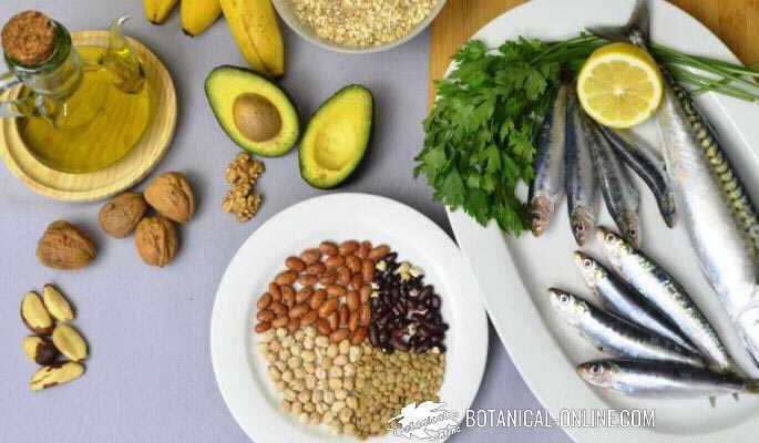 dieta dash salud cardiovascular