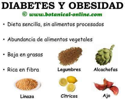 Dieta para la diabetes y la obesidad