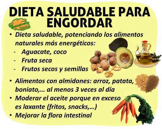dieta para engordar hipercalorica alimentos muchas calorias