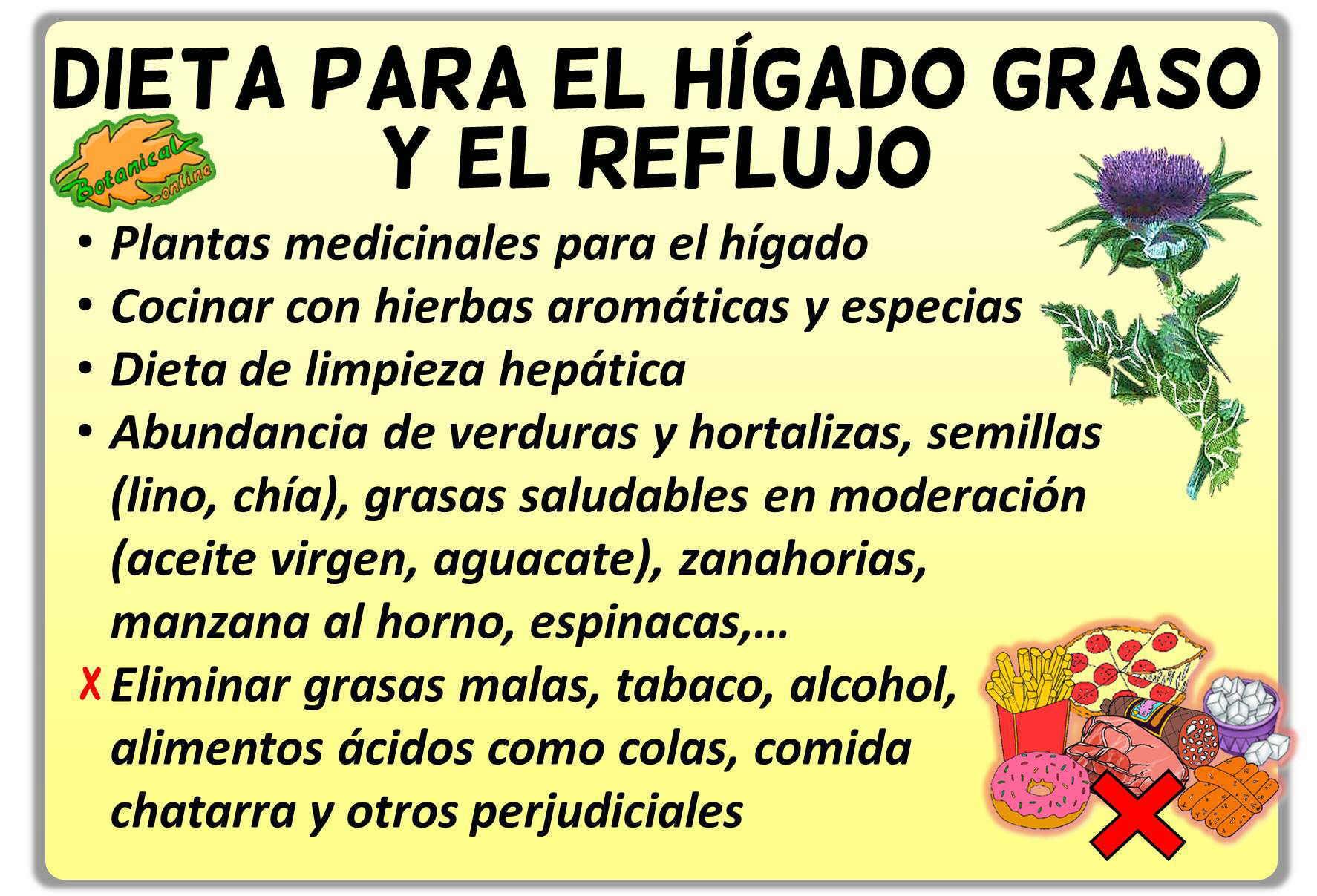 Tratamiento h gado graso y reflujo - Alimentos que curan el higado ...