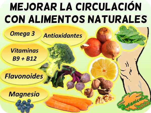 Alimentos Para La Mala Circulación En Las Piernas Botanical Online