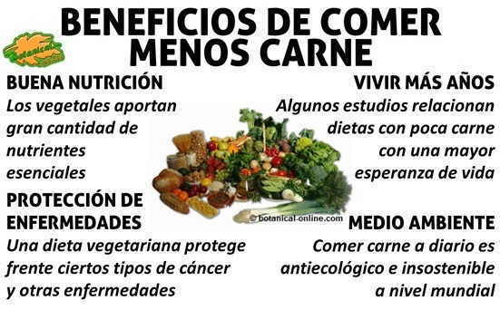 Beneficios de la dieta vegetariana