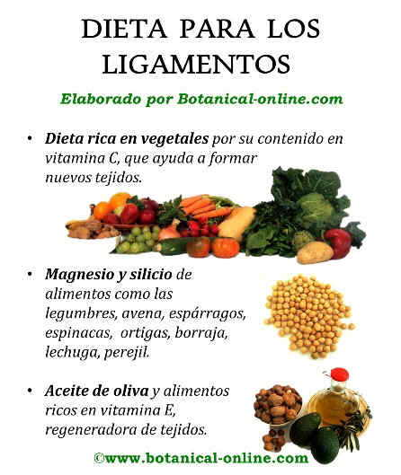 Dieta para los ligamientos