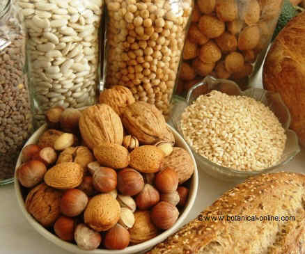 Foods rich if slow digesting carbohydrates
