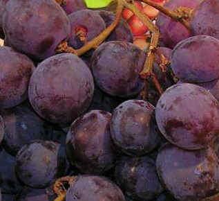 Fructosa en la uva