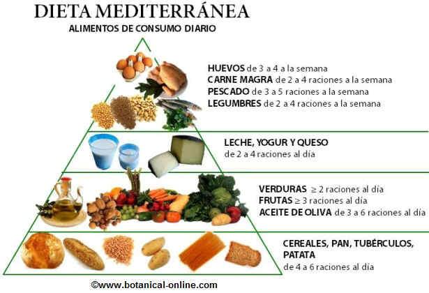 piramide nutricional dieta mediterranea