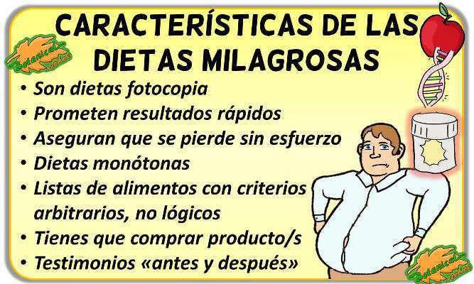 caracteristicas dietas milagro definicion