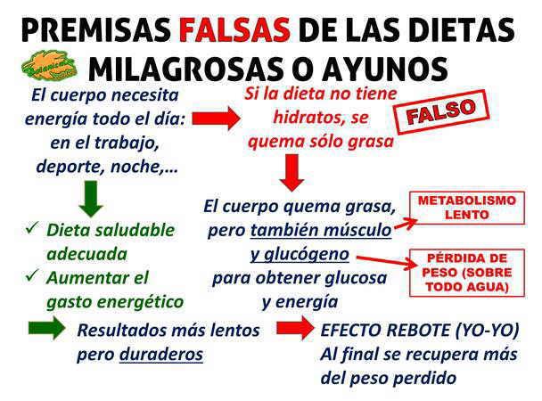 presmisas falsas teoria dietas para adelgazar metodo