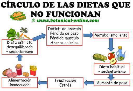 círculo de las dietas que no funcionan