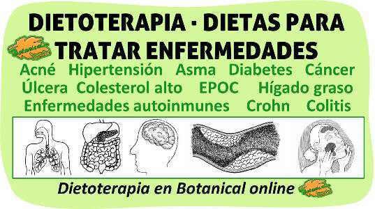 dietoterapia dietas para curar enfermedades