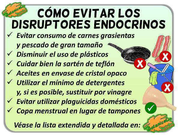 como eliminar evitar quitar reducir disruptores endocrinos alimentos hogar teflon detergentes pesticidas