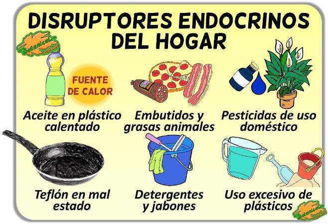 ejemplos disruptores endocrinos alimentos hogar teflon detergentes pesticidas