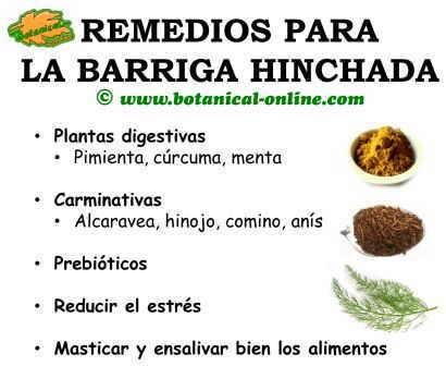 remedios con plantas para la barriga hinchada, distensión abdominal y tener vientre plano