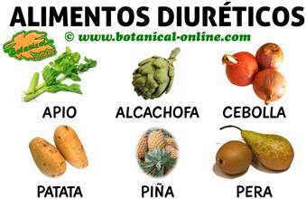 Alimentos diureticos para las recetas para la gota