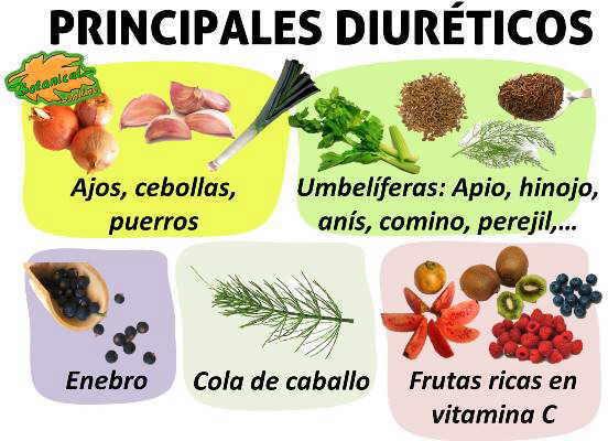 alimentos y plantas medicinales diureticas para infusiones