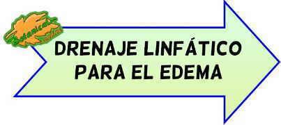 drenaje linfatico edema