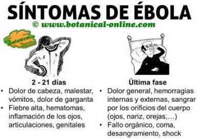 sintomas de enfermedad por virus ebola