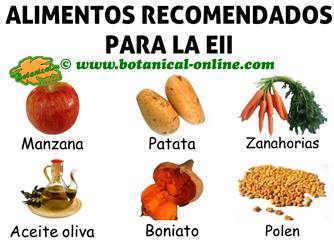 alimentos para eii