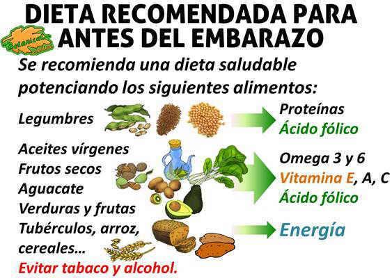 alimentos, suplementos y nutrientes recomendados para quedarse embarazada