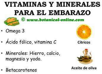 vitaminas y minerales en el embarazo