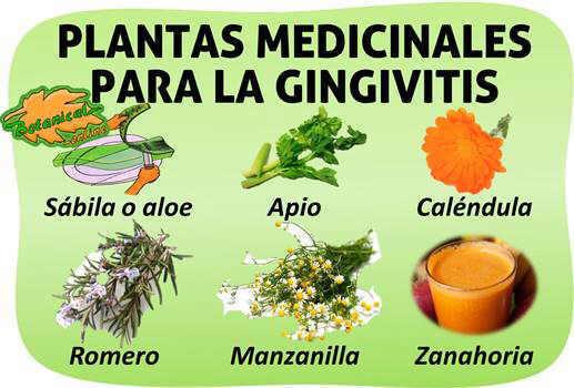 remedios naturales gingivitis o encias sangrantes
