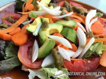 Ensalada de cebolla, aguacate, tomate, zanahoria y lechuga