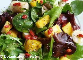 que alimentos me elevan el acido urico recetas de comida para bajar el acido urico niveles elevados de acido urico en sangre