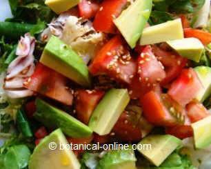 ensalada con tomate, aguacate y sésamo