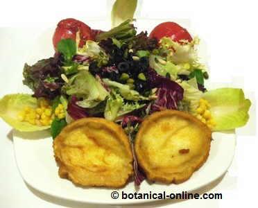 Ensalada completa con maiz, queso de cabra, tomate, pistachos, olivas y achicoria