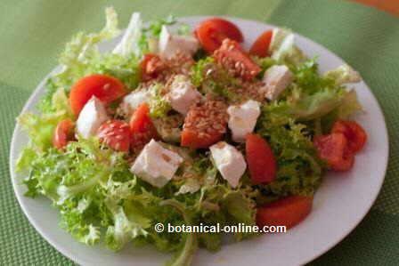 ensalada queso linaza tomate