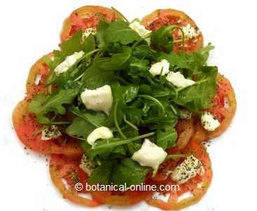 foto receta de ensalada de tomate, queso de cabra y rúcula