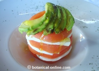 Presentación de receta ensalada tricolor, tomate, queso y aguacate