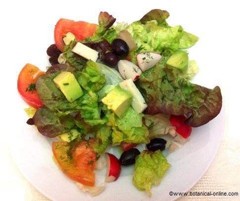 Ensalada variada con tomate, aguacate, aceitunas y queso