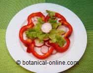 ensalada rica en vitamina c