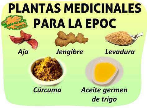 plantas medicinales y suplementos tratamiento natural enfermedad obstructiva crónica EPOC
