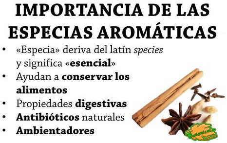Especias for Cultivo de plantas aromaticas y especias