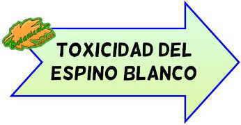 toxicidad del espino blanco