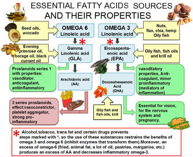 Foods rich in essential fatty acids for Fish oils are a good dietary source of