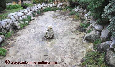 C mo hacer un estanque for Estanques online