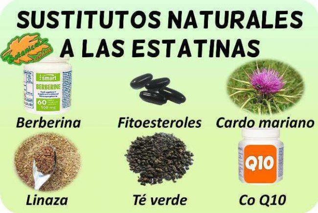 estatinas naturales sustitutos plantas suplementos