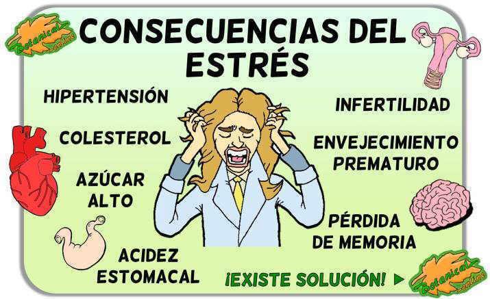 consecuencias del estres