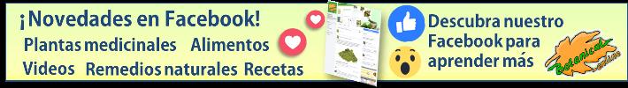 Fans de Facebook de Botanical