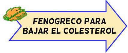 fenogreco colesterol