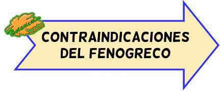 contraindicaciones del fenogreco