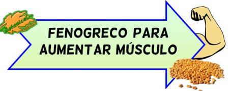 muscular con fenogreco