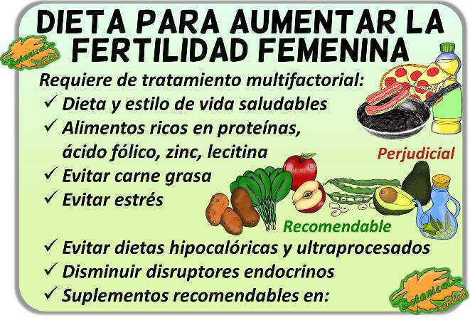 dieta fertilidad femenina alimentos fertil consejos embarazo