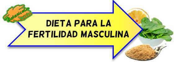 Causas de la infertilidad masculina - Alimentos fertilidad masculina ...