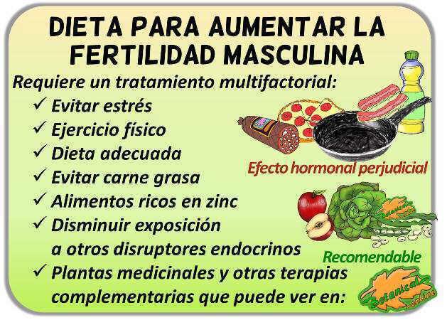 dieta fertilidad masculina hombres con infertilidad para ser fertiles