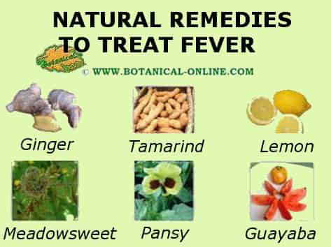fever remedies